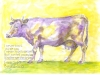 purplecow-penwatercolor2000