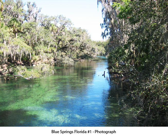 bluespringsflorida01-photograph