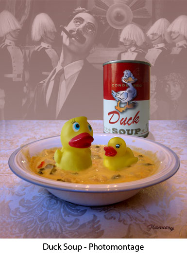 ducksoup-photomontage