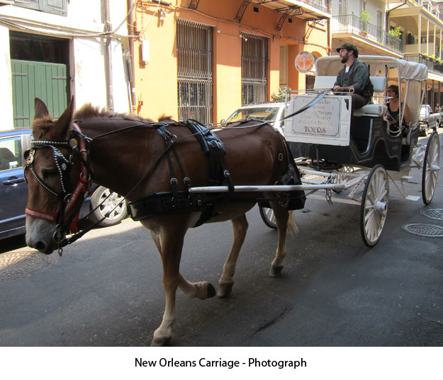 neworleanscarriage-photograph
